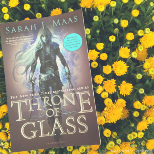 Celaena Sardothien and Aelin Galathymius from Throne of Glass by Sarah J. Maas on Cover to Cover Book and Blogging Blog by Kat Snark