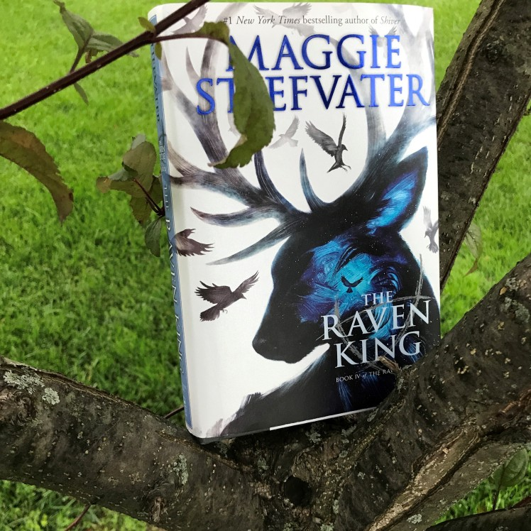 The Raven King by Maggie Stiefvater on Cover to Cover Book and Blogging Blog Yearbook Superlatives by Kat Snark