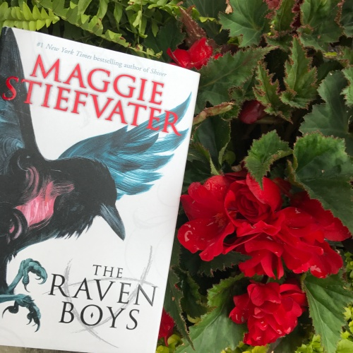 The Raven Boys by Maggie Stiefvater on Cover to Cover Book and Blogging Blog by Kat Snark